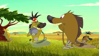 Download हिंदी Zig & Sharko - Goin home (S02E49) - Hindi Cartoons for Kid Video