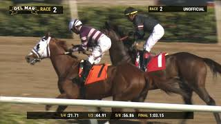 Download Fratelli wins race 2 at Del Mar 11/24/19 Video