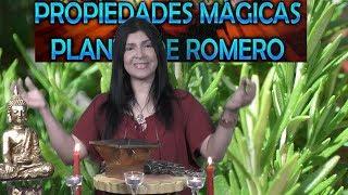 Download El Romero atrae bendiciones y aleja el mal . Video