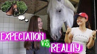Download Expectation VS Reality; Een eigen paard kopen | ft. felinehoi Video