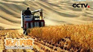 Download 《走遍中国》沙漠变良田 20180614   CCTV中文国际 Video
