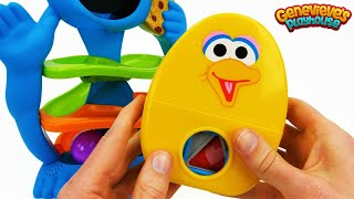 Download Toy Learning Videos for Toddlers - Cookie Monster, Peppa Pig, Paw Patrol! Video