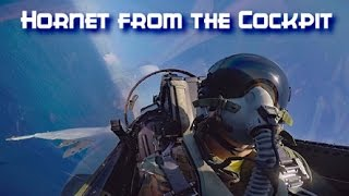 Download Hornet Action from the Cockpit - July 2016 Video
