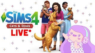 Download The Sims 4 Cats & Dogs LIVE w/Cupquake - First Impressions Video