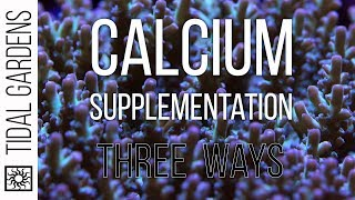 Download Calcium Supplementation 3 Ways - Kalkwasser, 2-Part, and Calcium Reactors Video