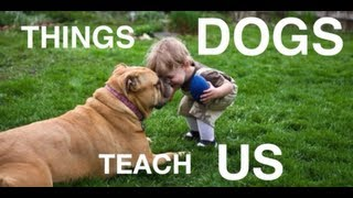 Download Things Dogs Teach Us Video