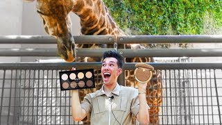 Download ZOO ANIMALS PICK MY MAKEUP Video