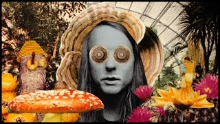 Download Andy Shauf - ″The Magician″ Video