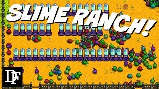 Download Slime Ranch! - Stardew Valley Gameplay HD Video