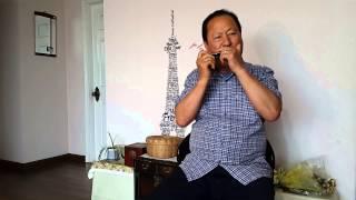 Download [섬마을 선생님, A key] 문광호 선생님/하모니카 연주(2015.5.2) Video