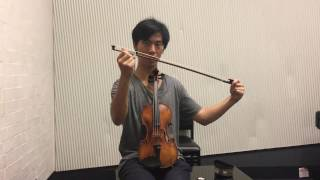 Download What Every Beginner Violinist NEEDS to know Video