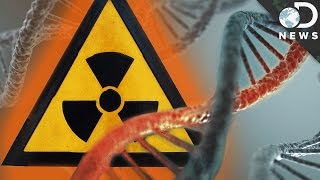 Download How Radiation Changes Your DNA Video