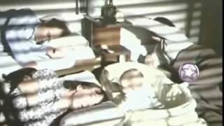 Download Tres alegres fugitivos (1988) Completa Video