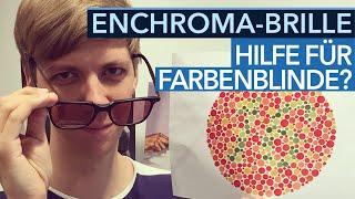 Download Enchroma-Brille im Test - Hilfe für farbenblinde Gamer? Video