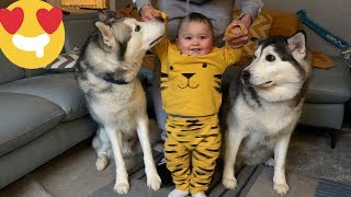 Download Babies First Step!! (BEST WAY TO START 2019) Video