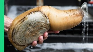 Download Exotic CHINESE FOOD Feast in Guangzhou! $250 Snake, Geoduck Sashimi and Sea Cucumber! Video