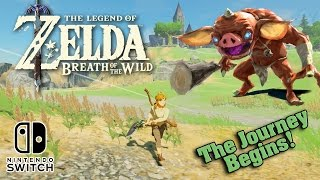 Download The LEGEND OF ZELDA: BREATH OF THE WILD on the Nintendo Switch!!! The Journey Begins! Video