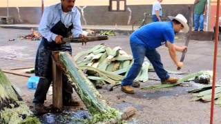 Download Tacátzcuaro, elaboración de Reatas de Lazar Video