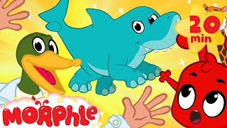 Download Super Hero Morphle's Crazy Animal Mixer! Shark Mixed with Elephant, Lion + cat and more Kids Video Video