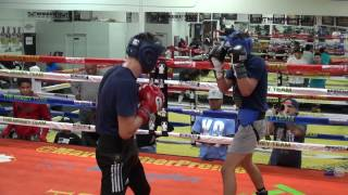 Download Young pros sparring inside the Mayweather Boxing Club Video