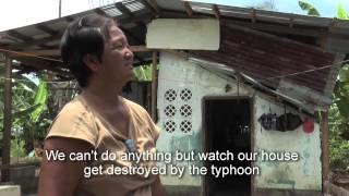 Download Haiyan: Building better, safer. Video