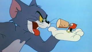 Download Том и Джерри - Беда на свою голову (Серия 41) Video