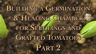 Download Building a Germination & Healing Chamber for Seedlings and Grafted Tomatoes Part 2 Video