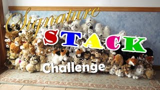 Download Webkinz Signature Stack Challenge 2 (ft. AwkwardTurtle329) Video