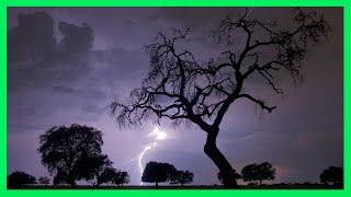 Download ⚡ Sonido de Lluvia y Truenos ⚡ 4 Horas - Tormenta Fuerte - Relax Lluvia y Truenos - Rain Storm Video
