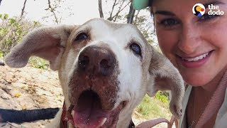 Download Dog Who Spent 7 Years In The Shelter Is SO Happy To Have A Family | The Dodo Faith = Restored Video