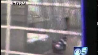 Download Aryan Brother Slays Inmate In Sheriff Joe Arpaio's Jail Video