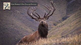 Download 2015 Gary Herbert's New Zealand Hunting Promo Video