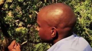 Download Vusi Mtokufa Video