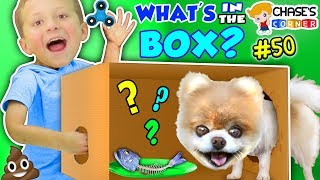 Download Chase's Corner: WHAT'S IN THE BOX? (#50 | DOH MUCH FUN Challenge) Video