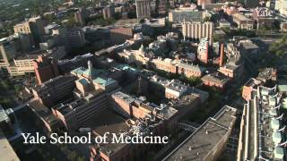 Download Aerial Views Of Yale University Video