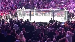 Download UFC 229 McGregor Khabib SCARY BRAWL, ALL ANGLES Crowd/Octagon Video