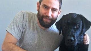 Download Watch how a dog helped one veteran conquer his PTSD Video