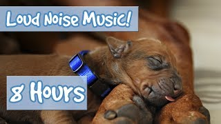 Download MUSIC FOR DOGS! Soothing Music for Anxious Dogs, Perfect for July 4th Fireworks and Loud Noises 🐶🎆 Video