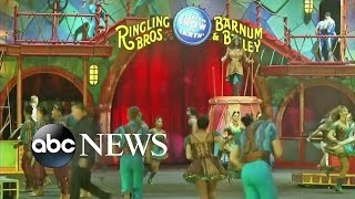 Download Ringling Brothers Circus Announces It Is Closing Down Video