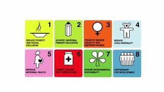 Download What are the Sustainable Development Goals (SDGs)? Video