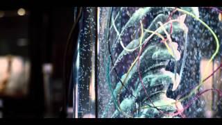 Download 『ジュラシック・ワールド』第1弾日本予告 8.5公開 Video