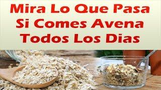 Download Mira Lo Que Pasa Si Comes Avena Todos Los Dias BAJA LA DIABETES EL COLESTEROL LA PRESION Y MAS Video