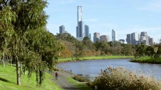 Download Adapting to a Changing Climate - Melbourne's Story | City of Melbourne Video