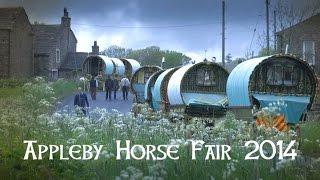 Download Appleby Horse Fair 2014 - DVD Trailer Video
