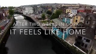 Download Study in Cork Video