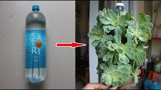 Download Người làm vườn nay còn biết cách tái chế thế này | Gardeners now know how to recycle this Video