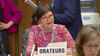 Download WFSA statement on GPW13 (WHA 2018) Video
