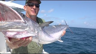 Download kingfish {Catch Clean Cook} Caramel Glazed Smoked Fish Dip Video