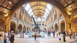 Download The Role of Museums in Today's Societies Video