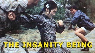 Download Wu Tang Collection -The Insanity Being Video